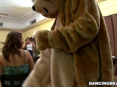 Remy s Dancing Bear Bachelorette Party Fiesta with Big Dick Male Strippers Thumb